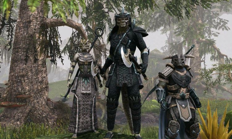Theory on the next chapter and character class after ESO